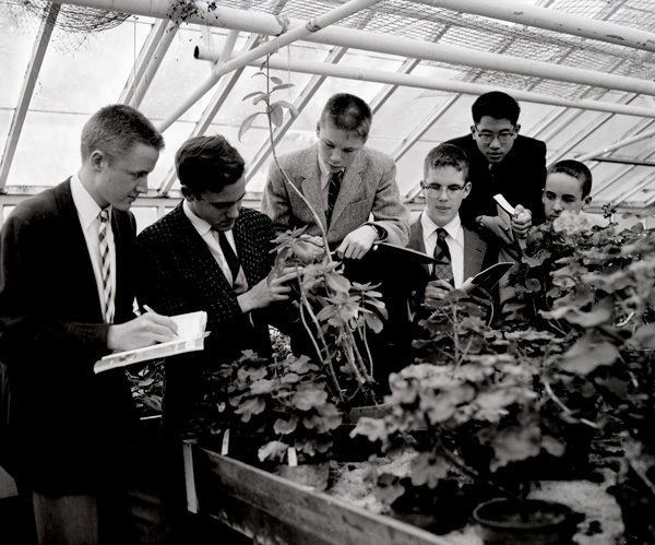 An informal biology club inspects plants in the Cranbrook greenhouse. Photograph by Harvey Croze. Copyright Cranbrook Archives.